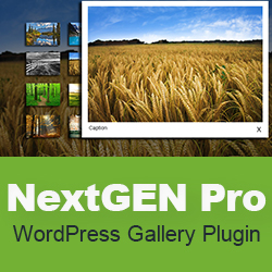 Create Beautiful Galleries in WordPress